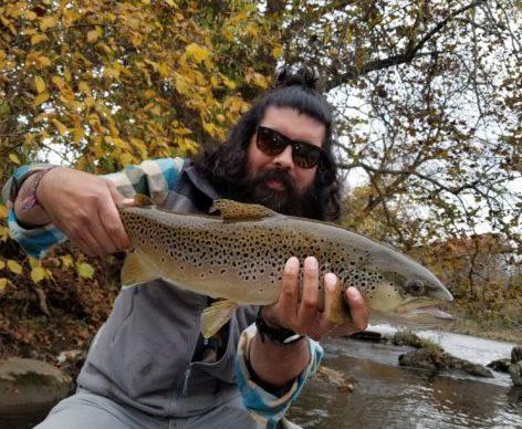 jon-tuckasegee-brown-trout.jpg
